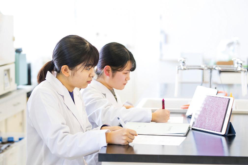 生化学実習