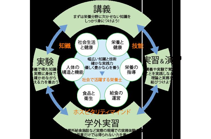 理論と実践が結びついた実践的なカリキュラム